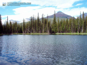 Hogarth Lakes Alberta
